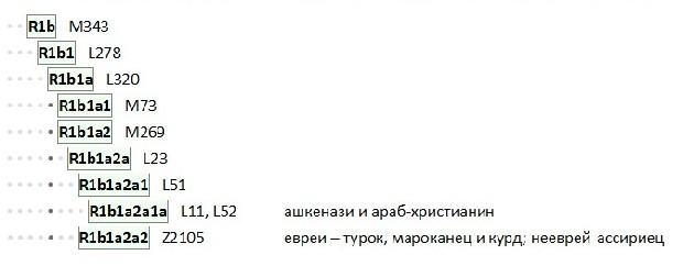 r1b-non-levits.jpg