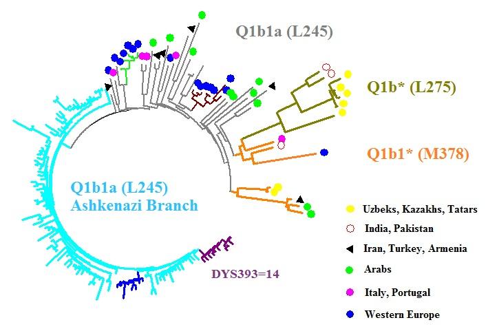 q1b-67.jpg