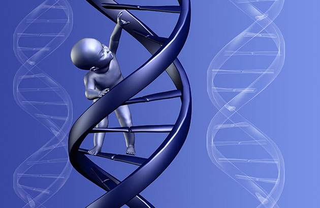 genetics are the main cause of psychopathy Psychopathy: a comprehensive review of its assessment and intervention  psychopathy is one of the most studied personality disorders,  genetics, psychosocial.