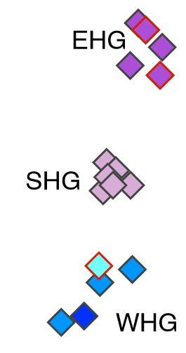 EHG-WHG.jpg